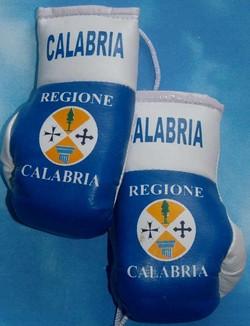 Calabria Mini Boxing Gloves